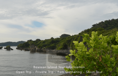 Bawean tourist information
